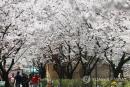 [내일날씨] 서울 낮 최고 27도 '초여름'…평년보다 4∼7도↑