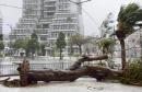 태풍 '타파', 日 서남부 타격…가로수 뽑히고 항공기 대거 결항