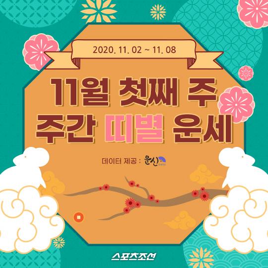 [카드뉴스] 11월 첫째주 주간 띠별 운세